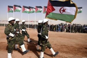drum war morocco sahara